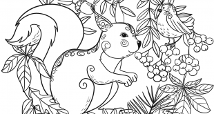Squirrel and a Bird coloring page | Free Printable Coloring Pages