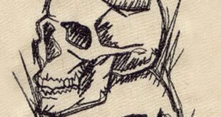 Shadowy Skulls Embroidered Canvas Field Bag
