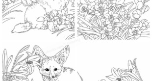 632. Gifts From Animals Coloring Book ~ Featuring Birth Flower